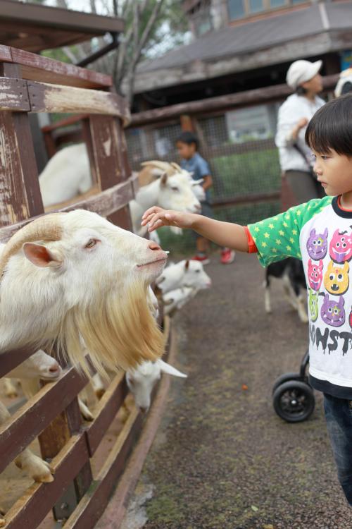 ミルク牧場 れん_Fotor.jpg