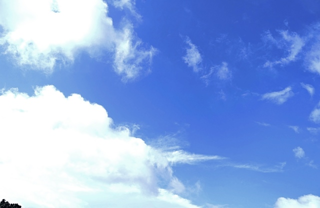 夏空_Fotor1.jpg