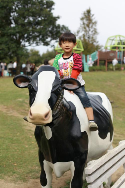 牛の上にも_Fotor.jpg