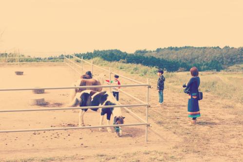 馬と蓮と家族_Fotor.jpg