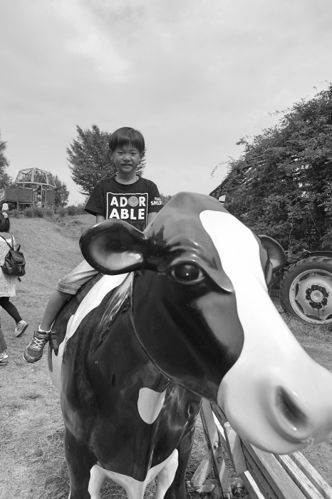 牛とレン3_Fotor1.jpg
